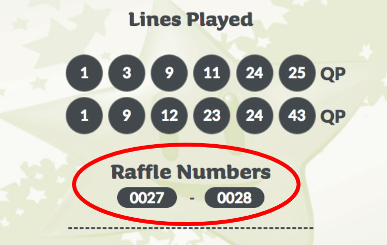 Lotto Plus Raffle numbers on ticket